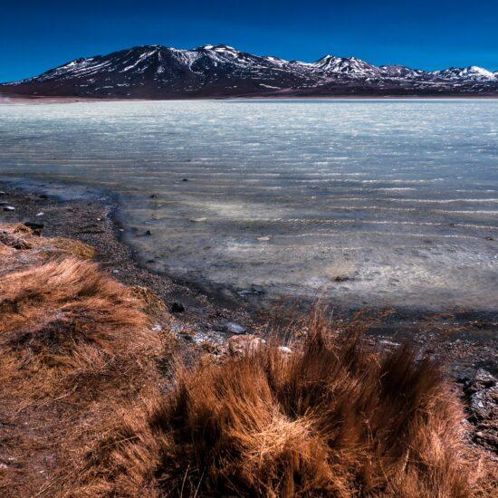 Bolivia-Eduardo-Avaroa-National-Reserve-Altiplano-Laguna