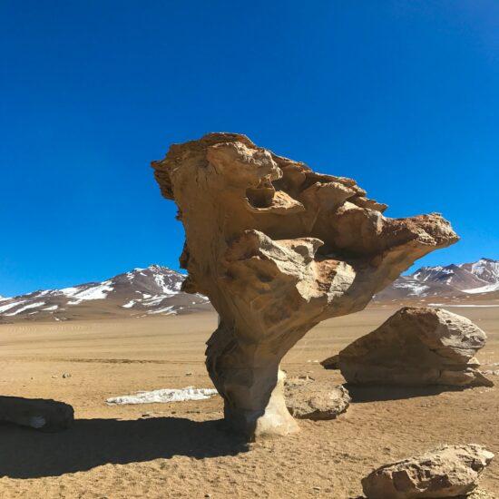 Bolivia-Eduardo-Avaroa-National-Reserve-Piedra-Arbol