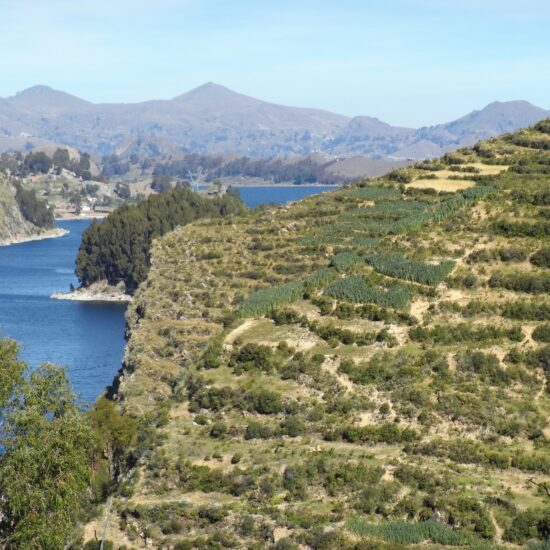 Bolivia-Titicaca-Lake-Isla-del-Sol-Teraces