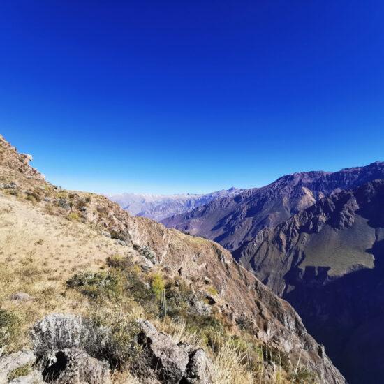 Colca-Canyon-Canon-del-Colca-5