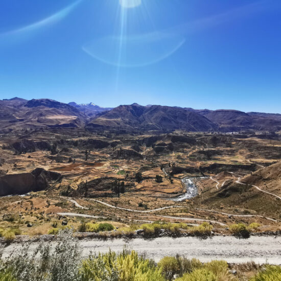 Colca-Canyon-Canon-del-Colca-8