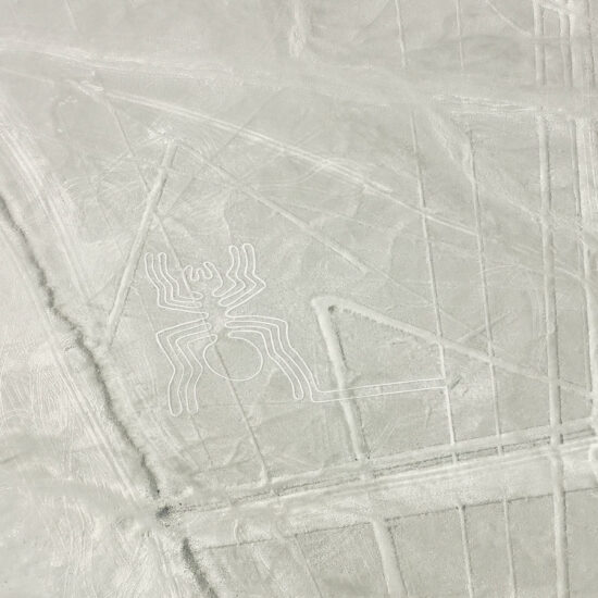 Nazca-Lines-Spider-Arana